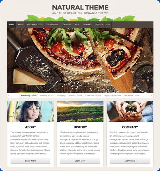 natural-wordpress-theme1